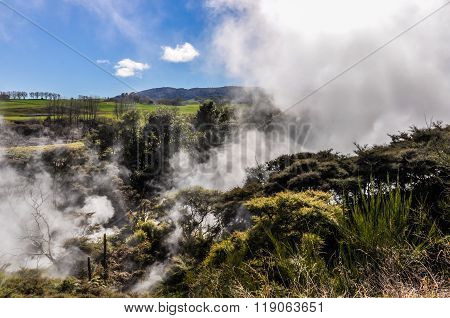 Steam From The Ground The Wai-o-tapu Geothermal Area, Near Rotorua, New Zealand