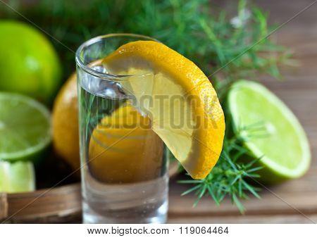 Gin With Lemon