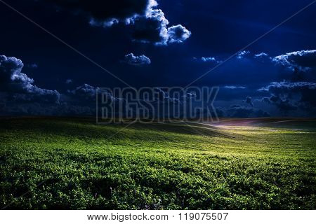 green night field. star sky