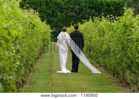 Newly Wed Couple Walking