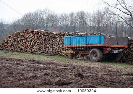 Firewood On Trailer