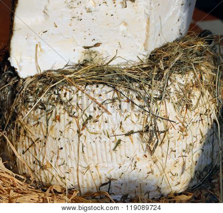 Alpine Cheese Is Aged Between Hay And Straw