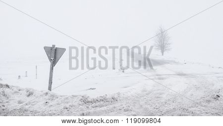 foggy road with sign and lonely tree