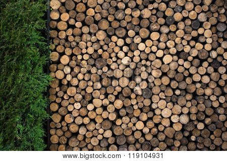 Pile Of Firewood In Garden