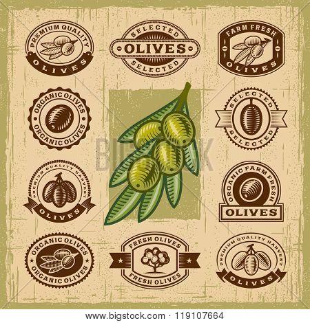Vintage olive stamps set. Editable EPS10 vector illustration with transparency.