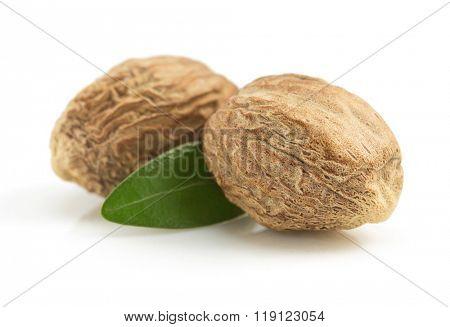 nutmeg isolated on white background