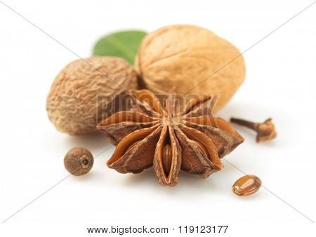 anise star and other spices on white background