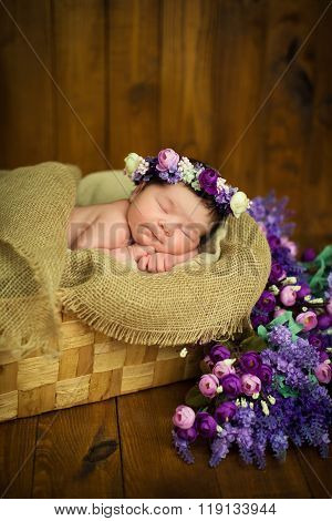 Newborn Baby Girl With A Wreath In A Wicker Basket With A Bouquet Of Purple Wild Flowers