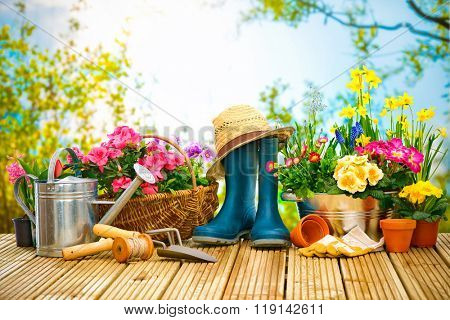 Gardening tools and flowers on the terrace in the garden