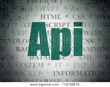 Programming concept: Api on Digital Paper background
