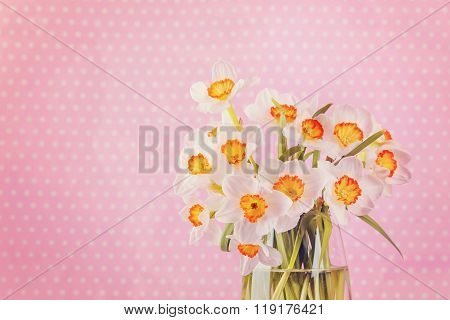 White Narcissus Flowers, Bouquet In Vase On Pink Background.
