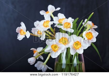 White Narcissus Flowers, Bouquet In Vase On Blackboard Background.