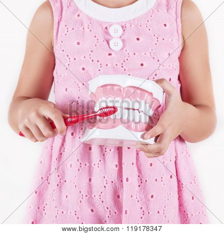 Child With Gloves Showing On A Jaw Model How To Clean The Teeth With Tooth Brush Properly And Right
