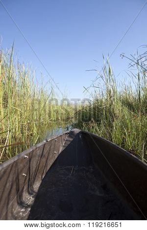 Mokoro pushing through reeds in the Okavango Delta ** Note: Soft Focus at 100%, best at smaller sizes
