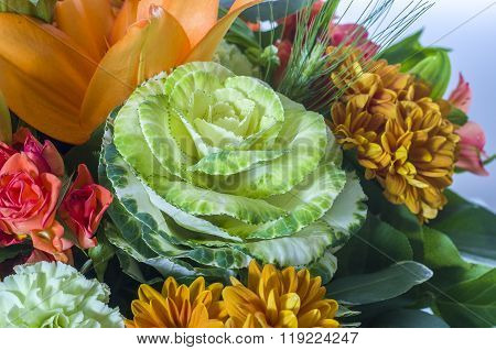 Bouquet Of  Brassica