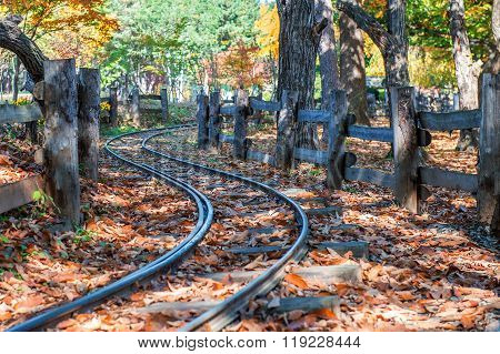 Railway In Nami Island,korea