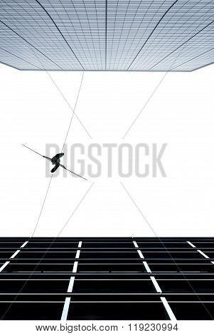 Highline Walker Concept Of Risk Taking And Challenge