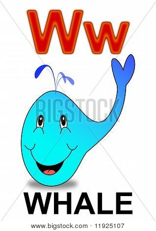 "Letter ""W"" whale"