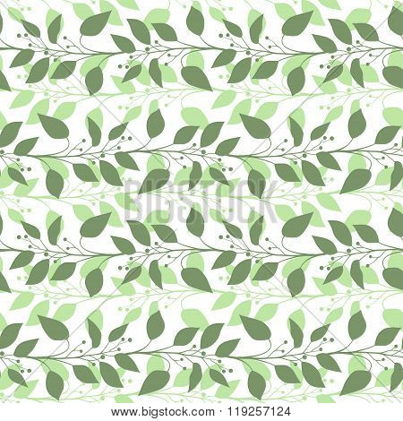 Seamless pattern branches and leaves of Camphor laurel. Floral background. Vector