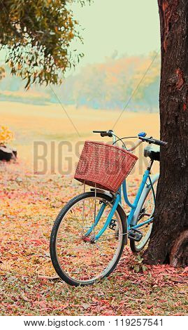 Bike for leisure trave