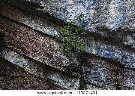 Layered Rocks1