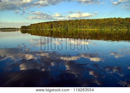 Dense forest on the lake shore in the evening