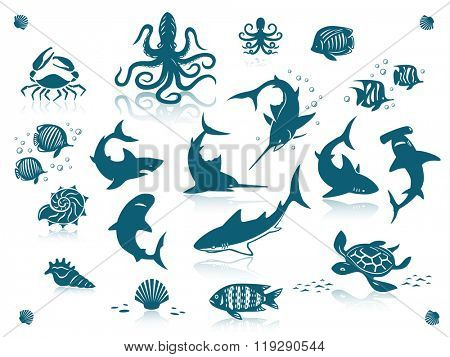 Sea life and fishes icon set. Isolated against a white background with reflections