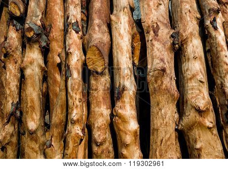 Pile Of Wood Logs Ready For Winter - Wood Logs Background