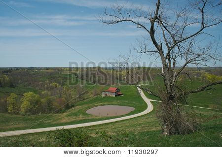 Barn and country side scene with scraggly tree..