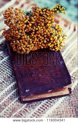 Vintage Books With Bouquet Of Flowers/ Nostalgic Vintage Background.flowers On The Book. Old Books W