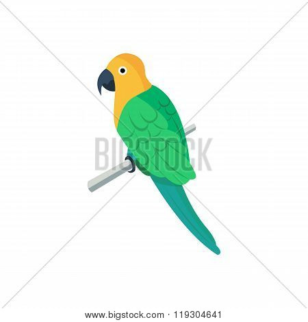Flat vector icon of parrot