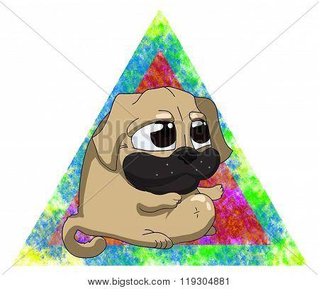 Cute chubby pug