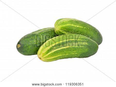 Cucumber Gherkin On White