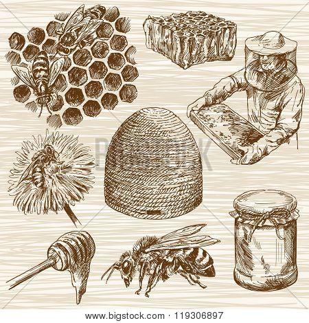 Honey, bee. Hand drawn set.