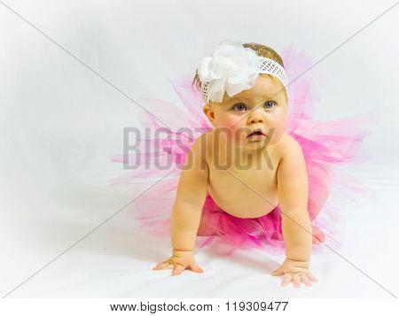 Little girl in pink tutu crawling