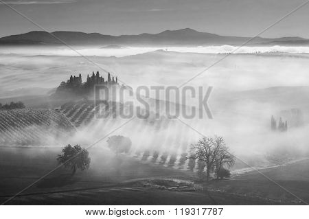 B/w Landscape With Fog