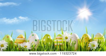 Row of Easter Eggs with Daisy on Fresh Grass