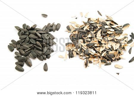 Sunflower Seeds And Husk