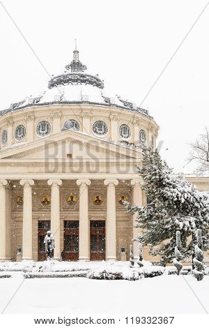 Bucharest, Romania - January 17: University Square On January 17, 2016 In Bucharest, Romania. Close