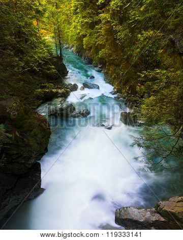 Lynn Creek In Vancouver, Bc