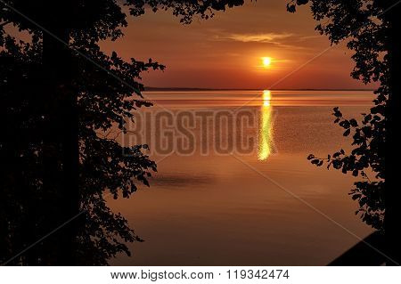 Sunset At The Lake With A View Through The Bush Silhouette