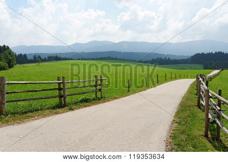 Narrow road passing through a green field in the Bavarian Alps Germany.