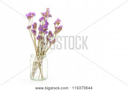 Dried Statice Flowers Isolated On White Background, Copy Space