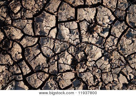 Cracked Dirt