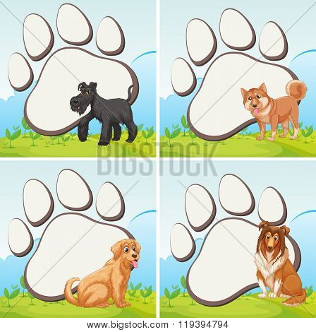 Frame design with domestic dogs illustration