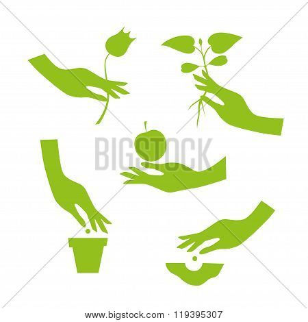 Green Silhouette Of Female Hand Performs Season Garden Works