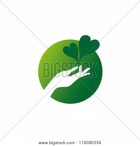 Female Hand Holds Two Green Heart Shaped Leaves