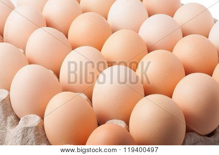 cardboard tray with eggs
