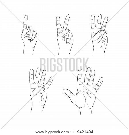Hands Fingers Numeral Set On White Background