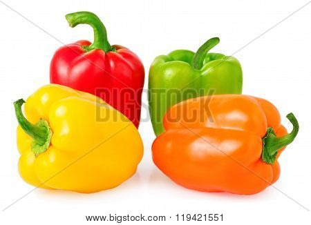 multicolored paprica bell pepper on white background